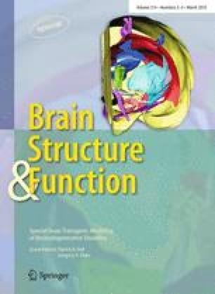 Αποτέλεσμα εικόνας για ¨Brain, Structure and Function¨,
