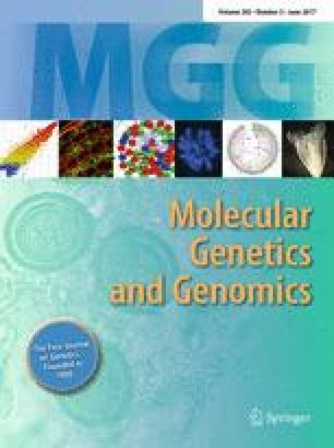 Molecular Genetics and Genomics