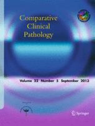Comparative Haematology International