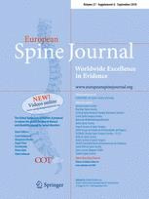 The Global Spine Care Initiative: a summary of the global