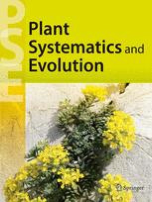 Systematic root anatomy of Asparagales and other monocotyledons ...