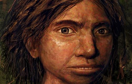 Why are human still evolving are humans still evolving essay