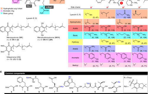 Organic Chemistry and Chemical Biology