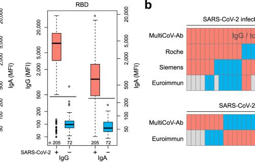 Exploring Beyond Clinical Routine Sars Cov 2 Serology Using Multicov Ab To Evaluate Endemic Coronavirus Cross Reactivity Nature Communications