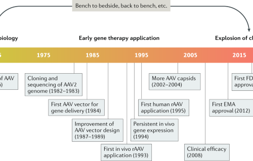 Gene therapy for rare diseases