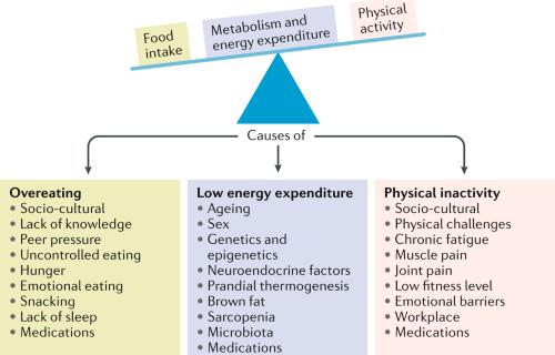 Epidemiology of cardiovascular disease