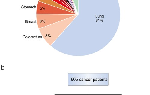 Top 100 in Oncology