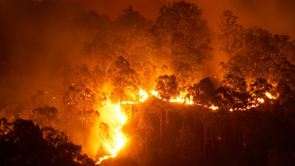 Editor's choice: wildfires