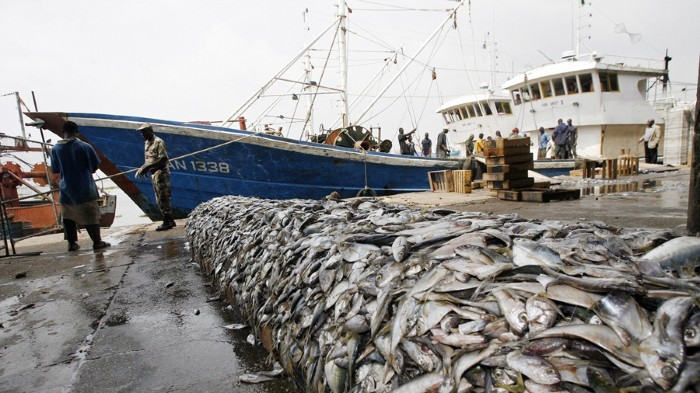 Many of the fish caught around the world are obtained by trawling the sea floor.