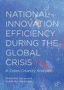 National Innovation Efficiency During the Global Crisis