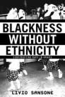 Blackness Without Ethnicity