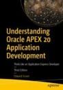 Understanding Oracle APEX 20 Application Development