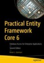 Practical Entity Framework Core 6