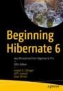 Beginning Hibernate 6