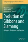 Evolution of Gibbons and Siamang