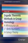 Ergodic Theoretic Methods in Group Homology