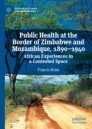 Public Health at the Border of Zimbabwe and Mozambique, 1890–1940