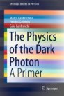 The Physics of the Dark Photon