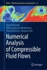 Numerical Analysis of Compressible Fluid Flows
