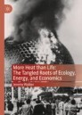 More Heat than Life: The Tangled Roots of Ecology, Energy, and Economics