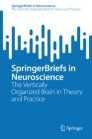 The Vertically Organized Brain in Theory and Practice