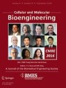 Front cover of Cellular and Molecular Bioengineering